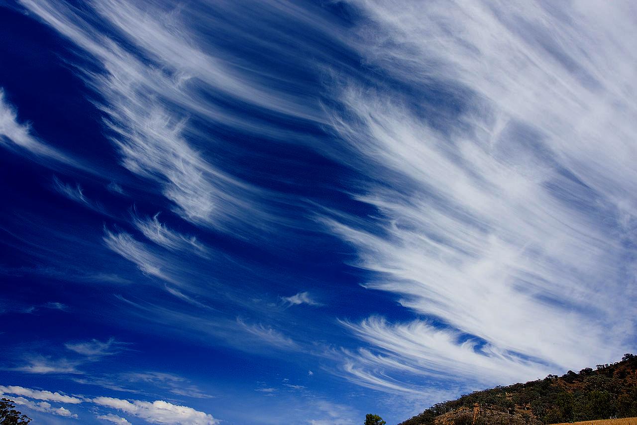 Wolken veren